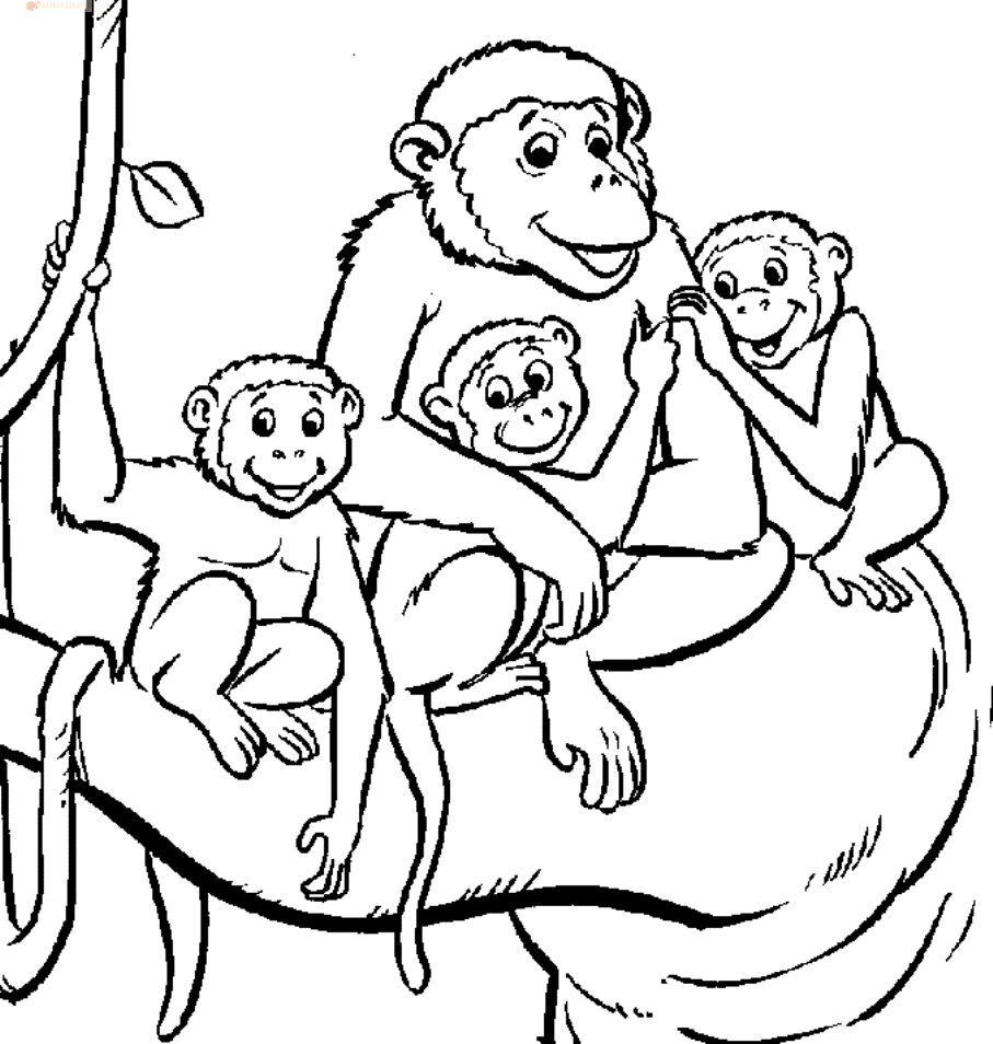 Раскраски обезьянок