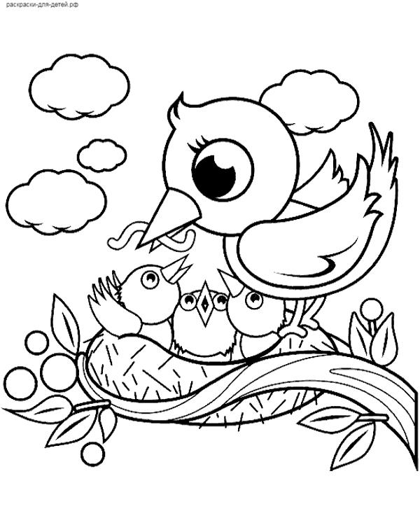 Раскраски птицы для детей